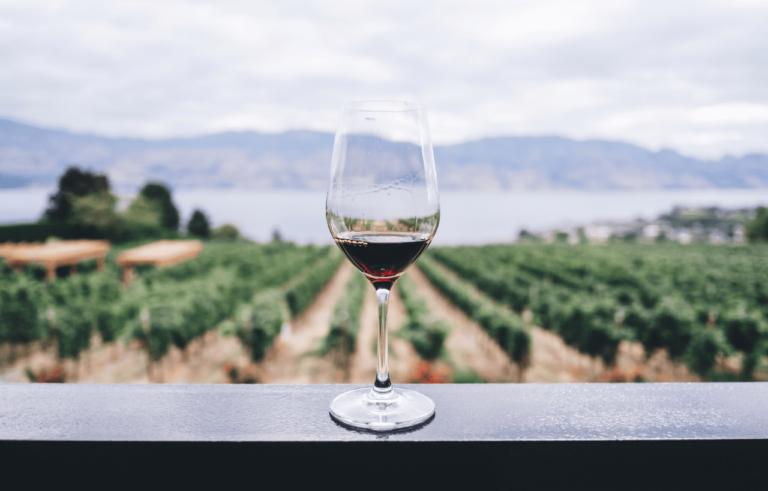 Vino Murciano: cualidades, sabor y aroma del vino de Murcia