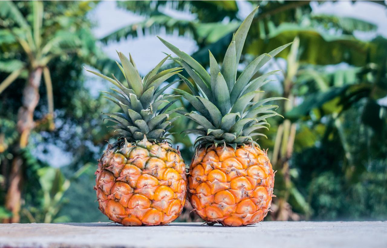 9 alimentos que adelgazan de forma saludable y natural